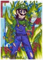 Luigi green fire -Super Mario- by raptorthekiller
