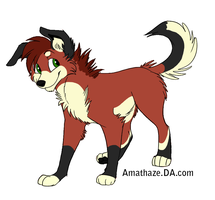 Another woof by labramazing