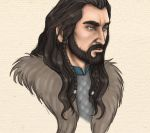 Thorin - animation by TheHellcow