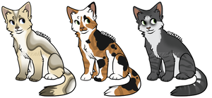 Cat Adopts by BettaRae