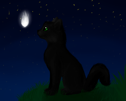 Hollyleaf by Accalialove