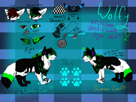 wolfy feral reference sheet by whitewolfspup