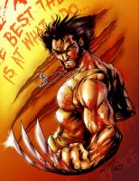 Wolverine Clrs: Bloody by CdubbArt