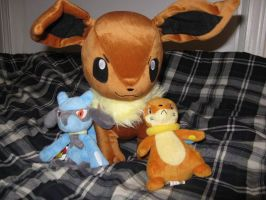 Pokemon plushies :3 by R777man