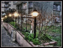 The Cat and The Lanterns by ISIK5