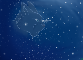 Starclan Skys by shadowily