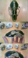 Animal Skull Arts And Crafts by Taxidermania