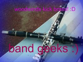 Band Geeks 3 by sonicrocker