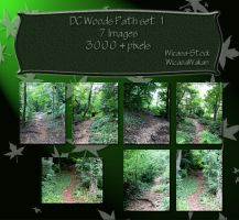 DC woods path set1 by Wicasa-stock