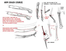 Arm Crash Course by FUNKYMONKEY1945