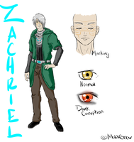 Zachriel Wyndscarr: Alternate Costume by Megane--Sama