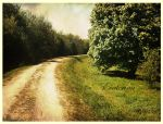 the road by Ecaterina13