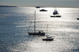 Boats in THEOULE SUR MER bay by A1Z2E3R