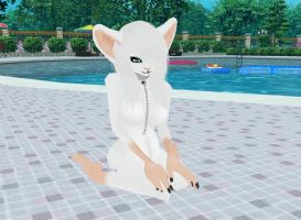 Albino Mouse by FurryFreakLover