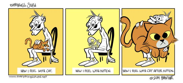 Everything's Stupid comic - Cats by brien-likes-cartoons
