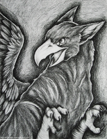 Charcoal Gryphon by The-Nutkase