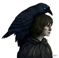Bran Stark by strawberry-mint