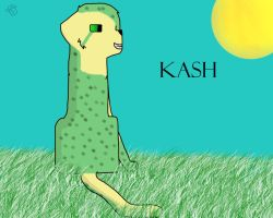 Art Trade: Kash by LakotaWolfie