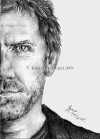 HUGH LAURIE  HOUSE MD by blanket86