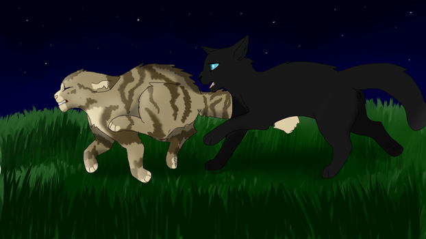 Crowfeather And Leafpool by 27TYLER01