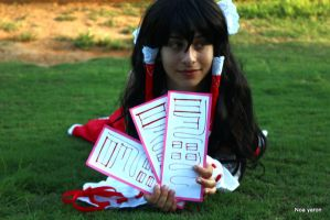 reimu and the cards by noay94