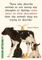 Animals have no feelings by HewArt