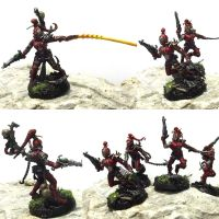 Dark Eldar Wyches - Blood Brides by DesireeMorte