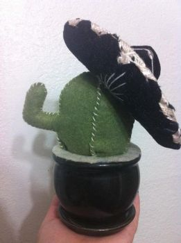 Juan-Carlos the cubicle cactus by wishididntwakeup