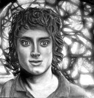 Frodo Baggins by megadancingpanda
