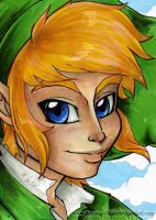 LoZ: SS - Link Art Card by KeyshaKitty