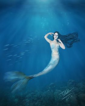 The Mermaid by jayvaleri