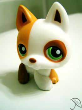 Littlest Pet Shop Dog II by ChelseaIsAPansy