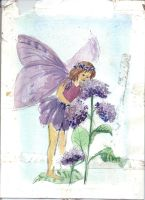 Purple Fairy by CHLI