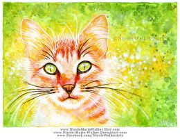 Orange Cat by Nicole-Marie-Walker