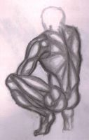 study of back muscles 4 by kyupol