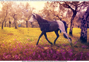 Secrets - Sold by ExquisArt