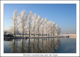 Winters photo by Betuwefotograaf