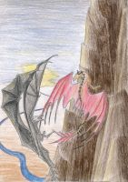 dragon fight (gift) by Ferania