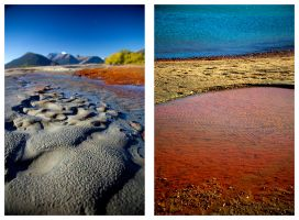 Abstractions on Landscapes by DallasNagata