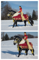 Breyer - Prancing Through A Winter Wonderland by The-Toy-Chest