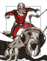 Antman (Colored) by GumbocRafael