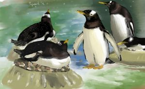 penguins by rajacic