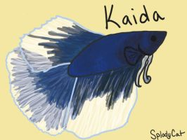 Betta Fish: Kaida by myexplodingcat