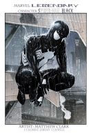 Spider-Man Black by JeremyColwell