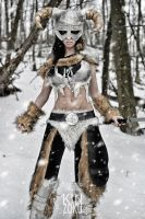 Skyrim FULLVIEW 2 by ZOMBIEBITME