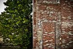 old Firestone plant 4 by Tommy8250