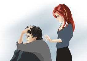 Harry-Ginny1 by yethro