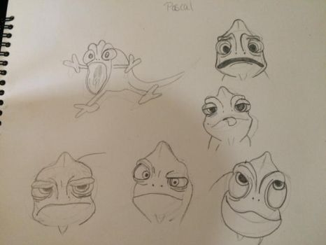 The many faces of Pascal by minty42