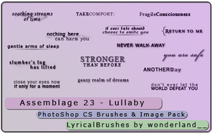 Assemblage 23 - Lullaby by Foxxie-Chan