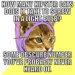 Hipster Cat Joke by madonnafan123